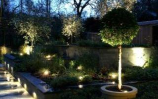 Фасадные светильники — виды, выбор и особенности монтажа