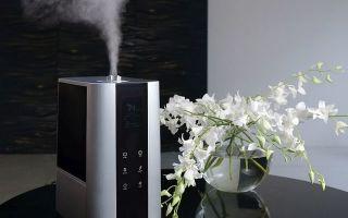 Какой увлажнитель воздуха лучше — паровой или ультразвуковой? Сравнительный обзор
