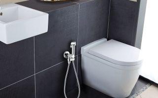 Гигиенический душ со смесителем: рейтинг лучших и советы по монтажу