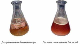 Очистка выгребных ям: обзор лучших методов и как очистить самому