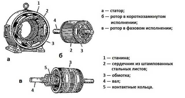 Понятие и разновидности роторов: обмотка и частота вращения ротора и статора