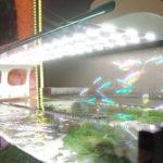 Светодиоды для аквариума - расчет и правильный подбор