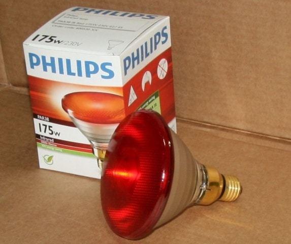 Инфракрасные лампы освещение, отопление курятников и птичников