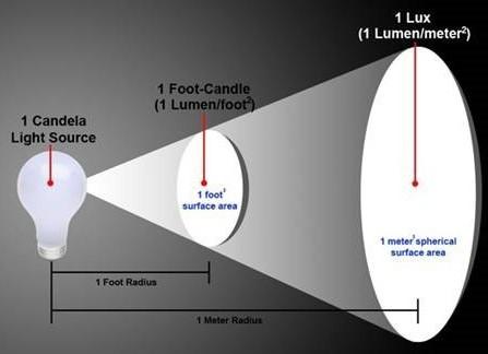 Что измеряется в люменах: формула силы освещения в физике, приборы для измерения