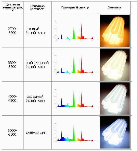 Какие бывают лампочки для дома: разновидности и нюансы выбора лучшей