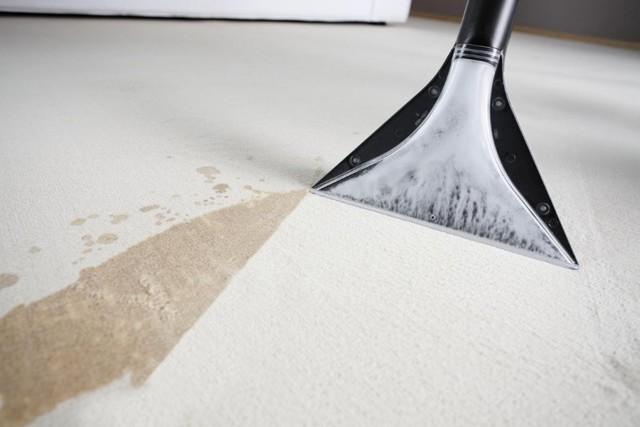 Как пользоваться моющим пылесосом: правила эксплуатации и ухода