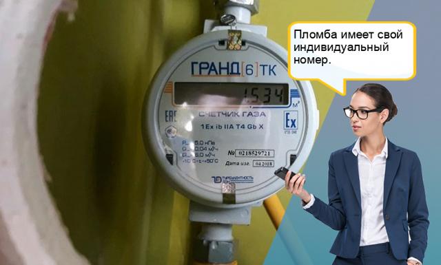 Как опломбировать газовый счетчик: законодательные нормы и правила
