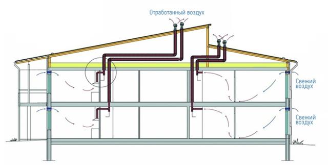 Как сделать вентиляцию в сарае для животных: нормы и требования и инструкции по обустройству