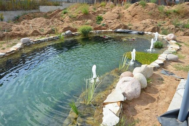 Как сделать пруд своими руками: подробный инструктаж по созданию водоема на приусадебном участке